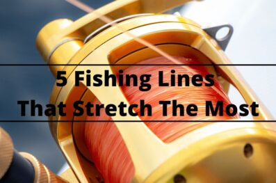 The 5 Fishing Lines that Stretch the Most