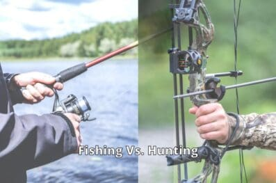10 Reasons Why Fishing Is Better Than Hunting