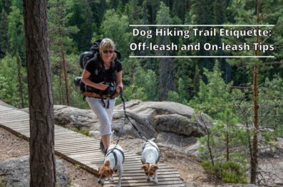 Dog Hiking Trail Etiquette: Off-leash and On-leash Tips