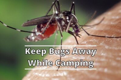 How to Keep Bugs Away While Camping (15 Effective Ways)