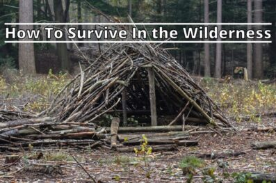 How To Survive In the Wilderness (8 Important Steps)